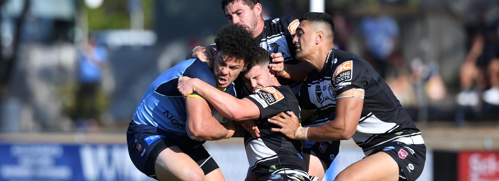 Late try sees Norths do just enough to down Tweed