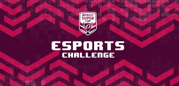 Bears and Falcons undefeated in E-sports Challenge