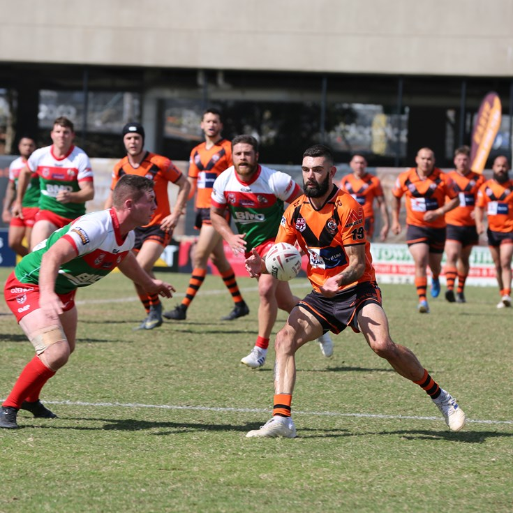 Seagulls take on Tigers in elimination final