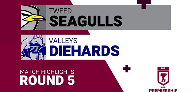 Round 5 highlights: Seagulls v Diehards